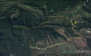 10km Circles in Forest google map