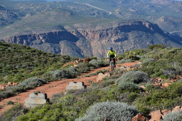 Of quivers and daisies – Namaqua Quest MTB