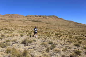 Mountain Running at its Best – Soaring Eagle Mountain Run