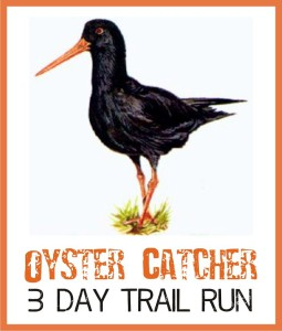 Oyster Catcher logo