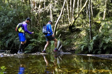 Outeniqua Quest 108km Non-Stop and Ultra