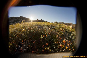 Four Days, Four Seasons – Namaqua Quest TR